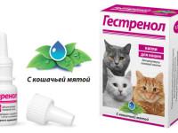 Инструкция по применению каплей Гестренол для кошек