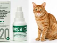 Инструкция по применению Веракола для кошек