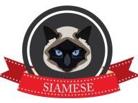 Имена и клички для сиамских кошек
