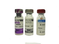 Вакцина Пуревакс для кошек