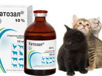 Инструкция по применению Катозала для кошек