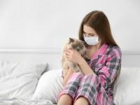 Какие болезни передаются от кошки к человеку