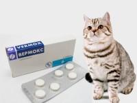 Как давать Вермокс кошке?