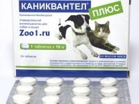 Инструкция по применению Каниквантела для кошек