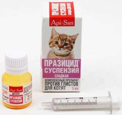 Как глистовать котенка