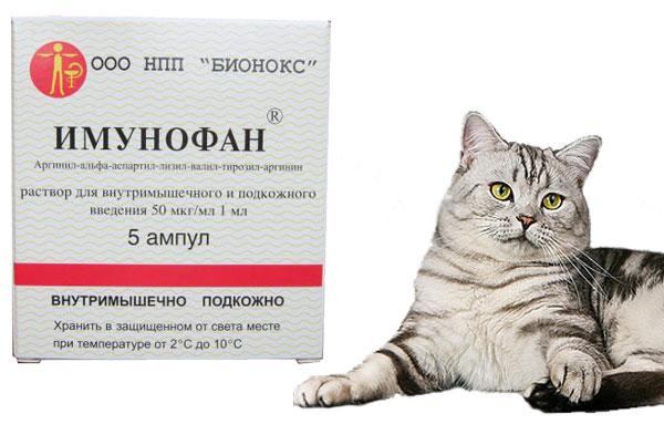 имунофан инструкция по применению для котят